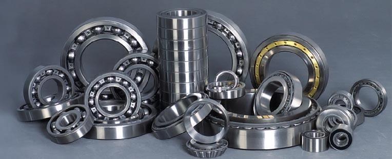 Slurry pump bearing